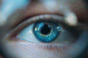 harrold-occupational-lenses